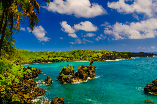 Maui Or Big Island For Vacation